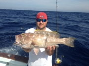 key largo yellowedge grouper