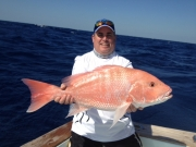 key largo red snapper