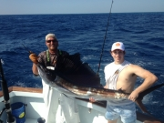 bnm key largo sailfish