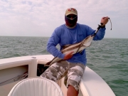 cobia fishing key largo