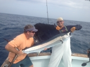 key largo sailfish