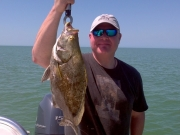 march key largo tripletail