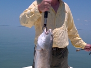 june key largo redfish